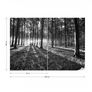 Forest Landscape Black And White Photo Wallpaper Wall Mural