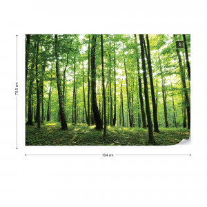 Forest Trees Green Nature Photo Wallpaper Wall Mural