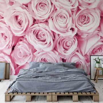 Fototapet - Buchet de Trandafiri – Roz