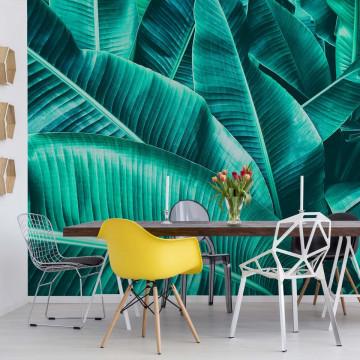 Fototapet - Frunze de Bananier – Decor Tropical