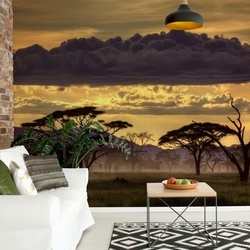 Good Evening Tanzania Photo Wallpaper Mural