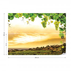 Grapes Vines Countryside Landscape Photo Wallpaper Wall Mural
