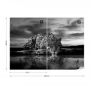Leopard Black And White Photo Wallpaper Wall Mural