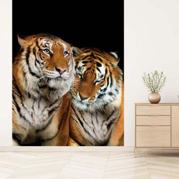 Loving Tigers Photo Wallpaper Wall Mural