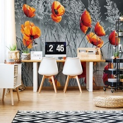 Orange Poppies Black And White Photo Wallpaper Wall Mural