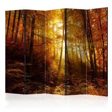Paravan - Autumn Illumination II [Room Dividers]