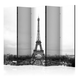 Paravan - Paris: black and white photography II [Room Dividers]