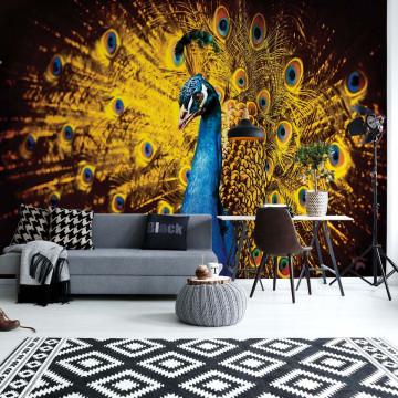 Peacock Bird Gold Feathers Photo Wallpaper Wall Mural
