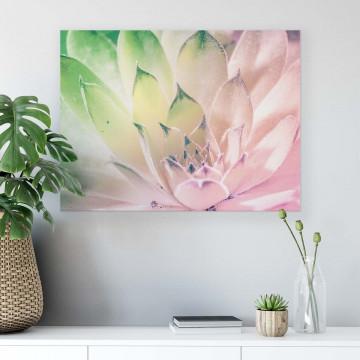 Plants Canvas Photo Print