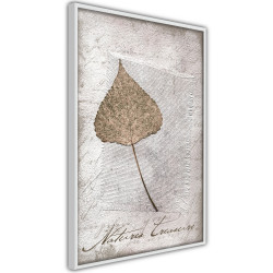 Poster - Dried Leaf