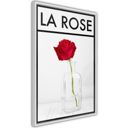 Poster - Rose in the Vase
