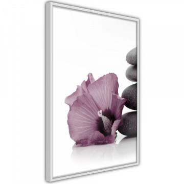 Poster - Violet Harmony