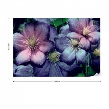 Purple Flowers Photo Wallpaper Wall Mural