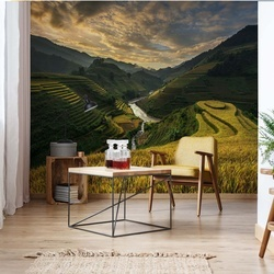 Rice Terrace In Vietnam Photo Wallpaper Mural