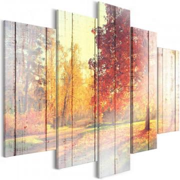 Tablou - Autumn Sun (5 Parts) Wide