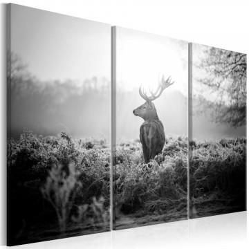 Tablou - Black and White Deer I