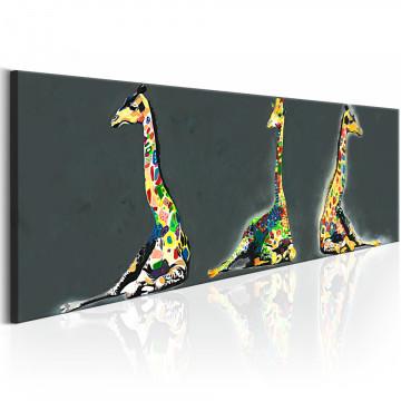 Tablou - Colourful Giraffes