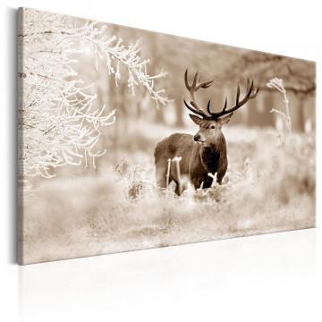 Tablou - Deer in Sepia