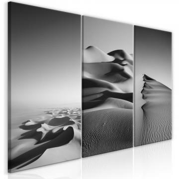 Tablou - Desert Landscape (Collection)