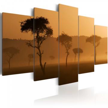 Tablou - Fog over a savannah