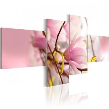 Tablou - Magnolia branch