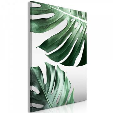 Tablou - Monstera Leaves (1 Part) Vertical