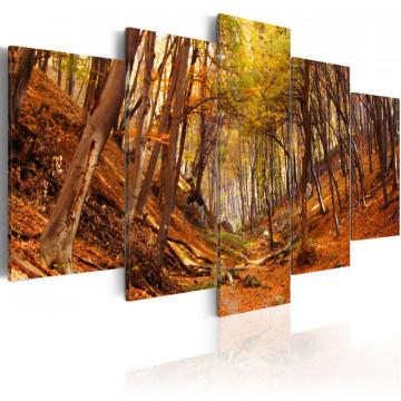 Tablou - Orange autumn