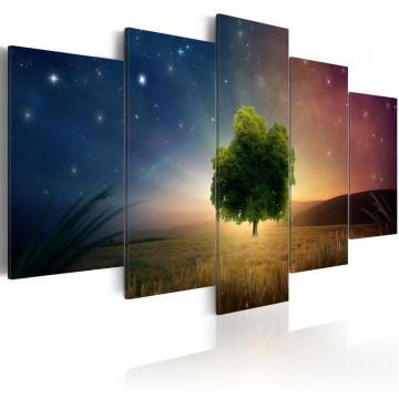 Tablou - Starry Nights