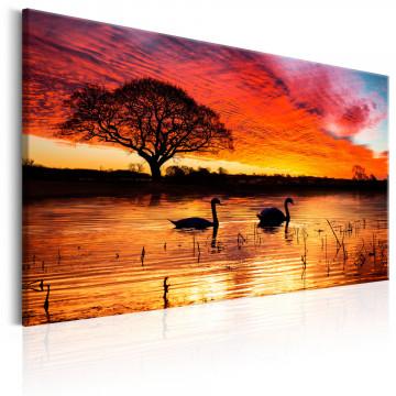 Tablou - Swan Lake