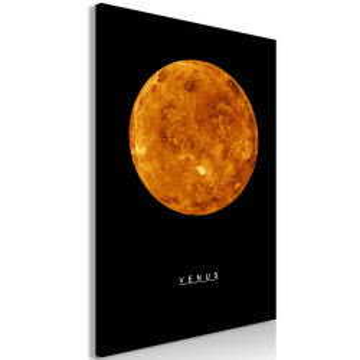 Tablou - Venus (1 Part) Vertical