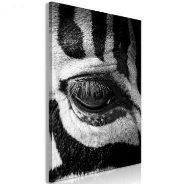 Tablou - Zebra Eye (1 Part) Vertical