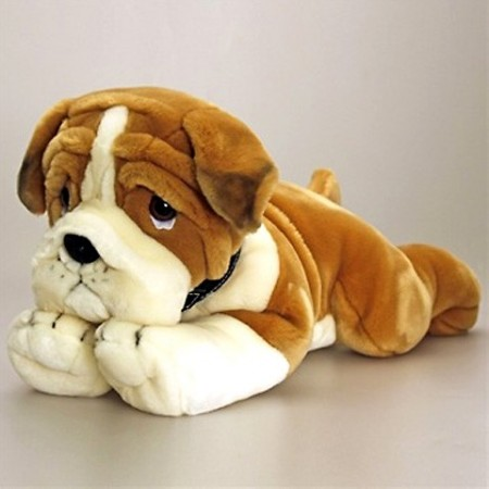 Catel de plus Bulldog 90 cm