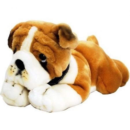 Catel de plus Bulldog 120 cm