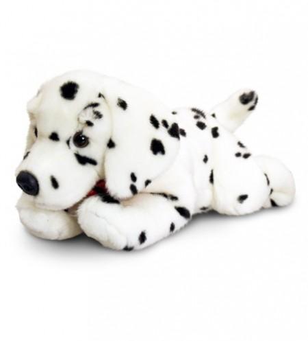Catel de plus Dalmatian 50 cm