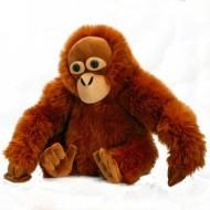 Maimuta de plus Urangutan 30 cm