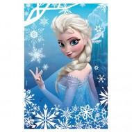 Puzzle mini Frozen 54 piese