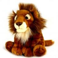 Leu african de plus 30 cm