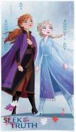 Prosop Ana si Elsa Frozen 30x50 cm