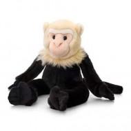 Maimuta de plus Capucin 30 cm