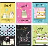 Caiet A4 matematica Street My Cat 54 pagini