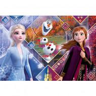Puzzle Maxi Frozen 2 Anna si Elsa Clementoni 104 piese
