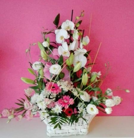 Centro mixto Orquídea en planta y flor cortada