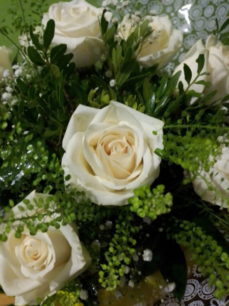 Docena de Rosas Blancas