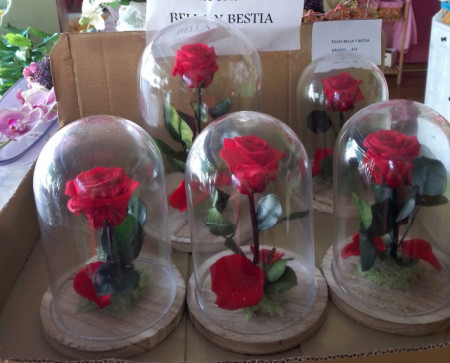 Rosas Preservadas en Cúpula de Cristal
