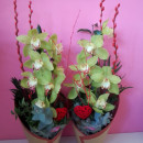 Centro con Vara de Orquídeas