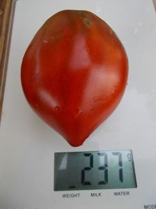 SEMINTE ROSII - T 478 LINNAEUS HEART