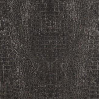 PAPEL TAPIZ CURIOUS CU 17950 BLACK imágenes