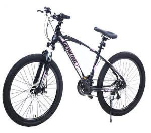 Winner Bike GENESIS VALVET 24