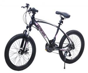 Winner Bike GENESIS VALVET 20