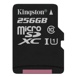 Kingston SDC10G2/256GB